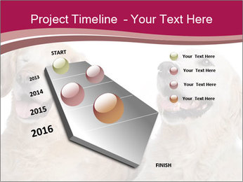 0000084253 PowerPoint Template - Slide 26