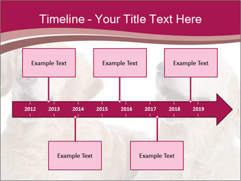 0000084253 PowerPoint Template - Slide 28