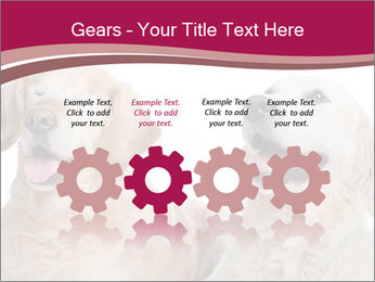 0000084253 PowerPoint Template - Slide 48