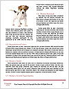 0000084253 Word Template - Page 4