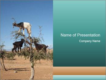 0000084265 PowerPoint Template - Slide 1