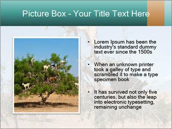 0000084265 PowerPoint Template - Slide 13