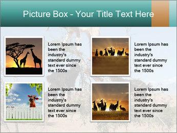 0000084265 PowerPoint Template - Slide 14