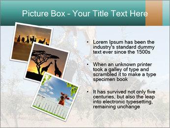 0000084265 PowerPoint Template - Slide 17