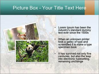 0000084265 PowerPoint Template - Slide 20