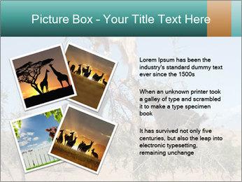 0000084265 PowerPoint Template - Slide 23