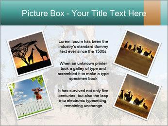 0000084265 PowerPoint Template - Slide 24