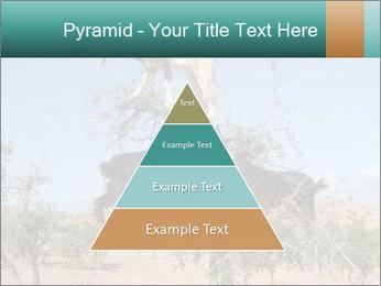 0000084265 PowerPoint Template - Slide 30
