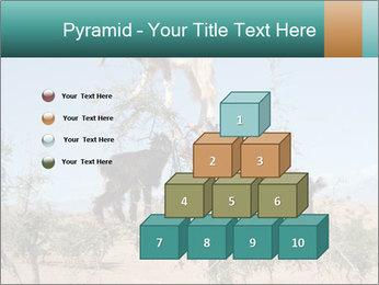 0000084265 PowerPoint Template - Slide 31