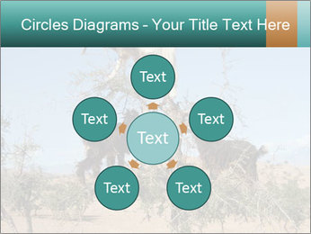 0000084265 PowerPoint Template - Slide 78