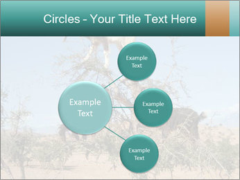 0000084265 PowerPoint Template - Slide 79