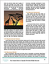 0000084265 Word Templates - Page 4