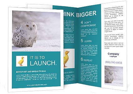 0000084267 Brochure Templates