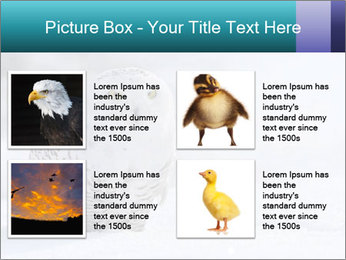 0000084267 PowerPoint Templates - Slide 14