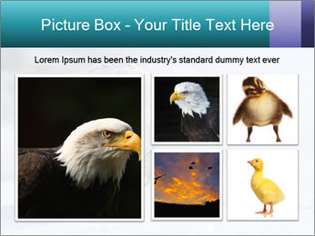 0000084267 PowerPoint Template - Slide 19