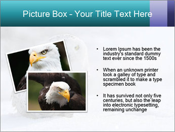 0000084267 PowerPoint Templates - Slide 20