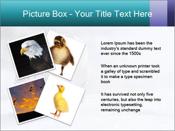 0000084267 PowerPoint Template - Slide 23