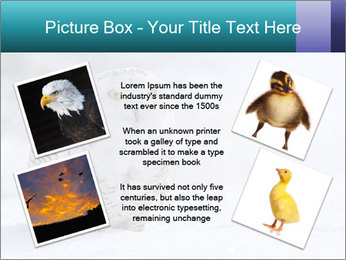 0000084267 PowerPoint Template - Slide 24