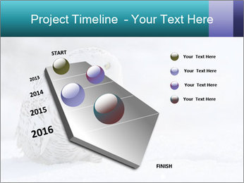 0000084267 PowerPoint Template - Slide 26