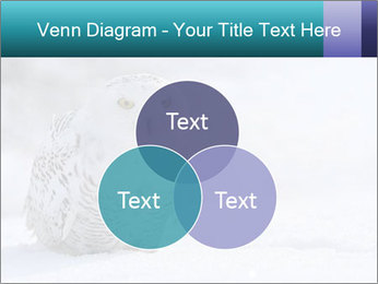 0000084267 PowerPoint Templates - Slide 33