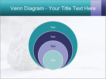 0000084267 PowerPoint Templates - Slide 34