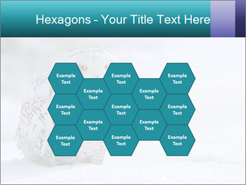 0000084267 PowerPoint Templates - Slide 44