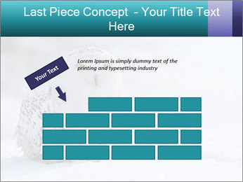 0000084267 PowerPoint Template - Slide 46
