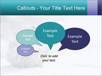 0000084267 PowerPoint Templates - Slide 73