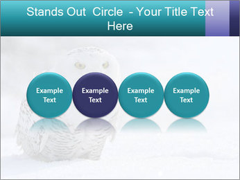 0000084267 PowerPoint Templates - Slide 76