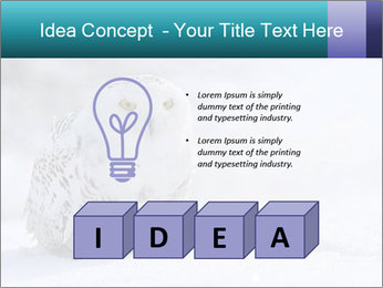 0000084267 PowerPoint Templates - Slide 80