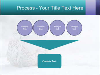 0000084267 PowerPoint Templates - Slide 93