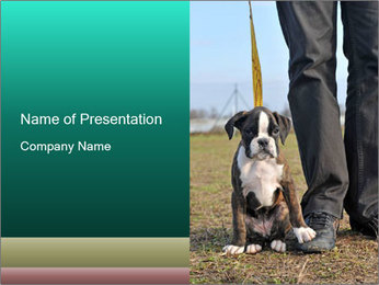 0000084269 PowerPoint Template - Slide 1