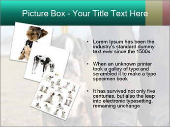 0000084269 PowerPoint Template - Slide 17