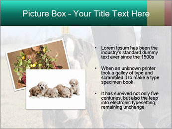 0000084269 PowerPoint Template - Slide 20