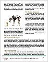 0000084269 Word Templates - Page 4