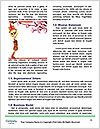 0000084273 Word Templates - Page 4
