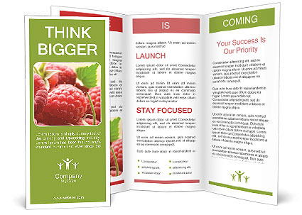 0000084275 Brochure Templates