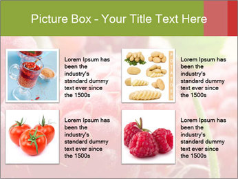 0000084275 PowerPoint Template - Slide 14