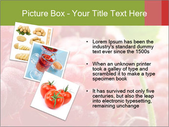 0000084275 PowerPoint Template - Slide 17