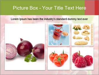 0000084275 PowerPoint Template - Slide 19