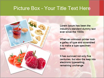 0000084275 PowerPoint Template - Slide 23