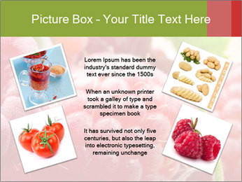 0000084275 PowerPoint Template - Slide 24