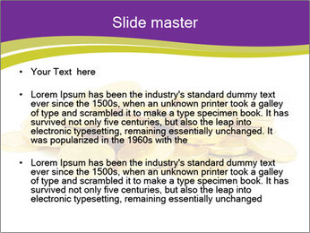 0000084280 PowerPoint Templates - Slide 2