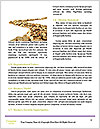 0000084280 Word Template - Page 4