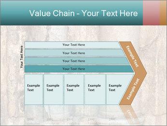 0000084282 PowerPoint Templates - Slide 27