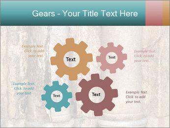 0000084282 PowerPoint Templates - Slide 47