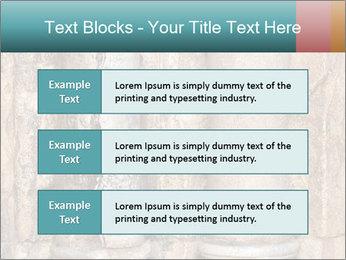 0000084282 PowerPoint Templates - Slide 58