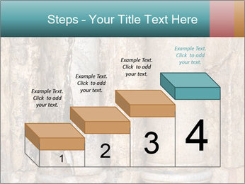 0000084282 PowerPoint Template - Slide 64