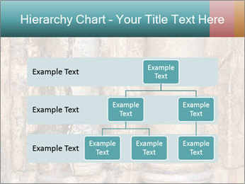0000084282 PowerPoint Templates - Slide 67