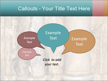 0000084282 PowerPoint Templates - Slide 73